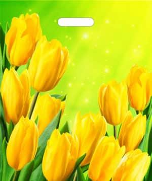 """Пакет """"Жёлтые тюльпаны"""", 38*45 см"""