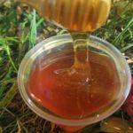 Васильковый мёд. Урожай 2021 года
